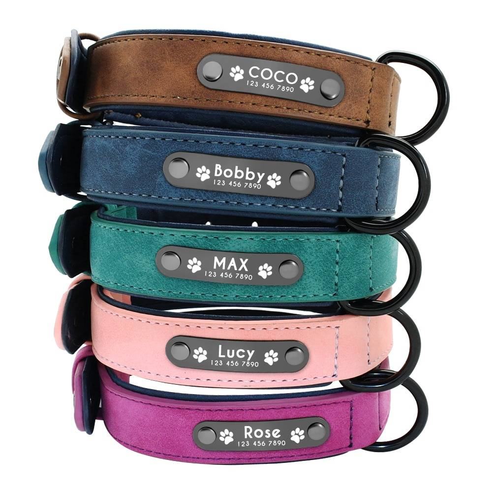 Dog's Leather Collar with ID Tag Cats & Dogs Pet Collars, Harnesses & Leashes