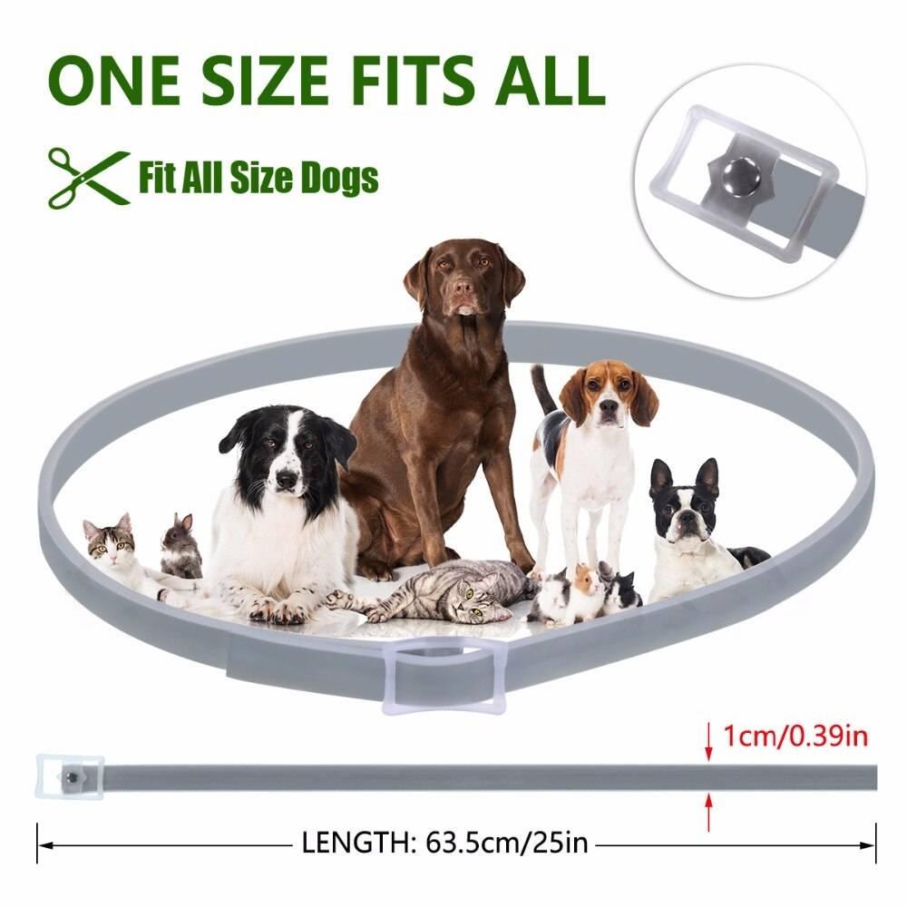 Dewel Dog Collar Anti Flea Mosquitoes Ticks Insect Waterproof Herbal Pet Collar 8 Months Protection Dog Accessories Uncategorized