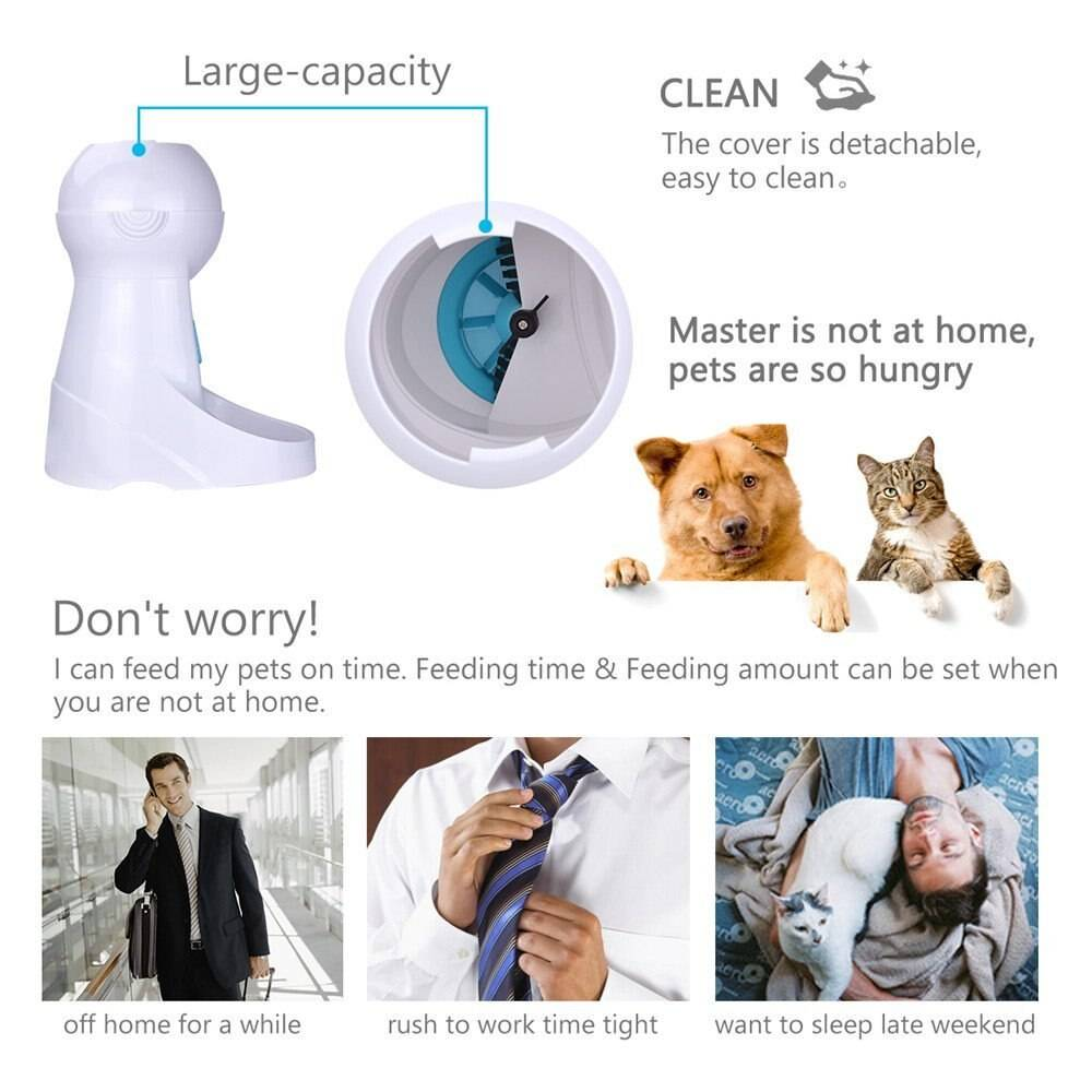 LCD Screen Automatic Pet Feeder with Voice Record