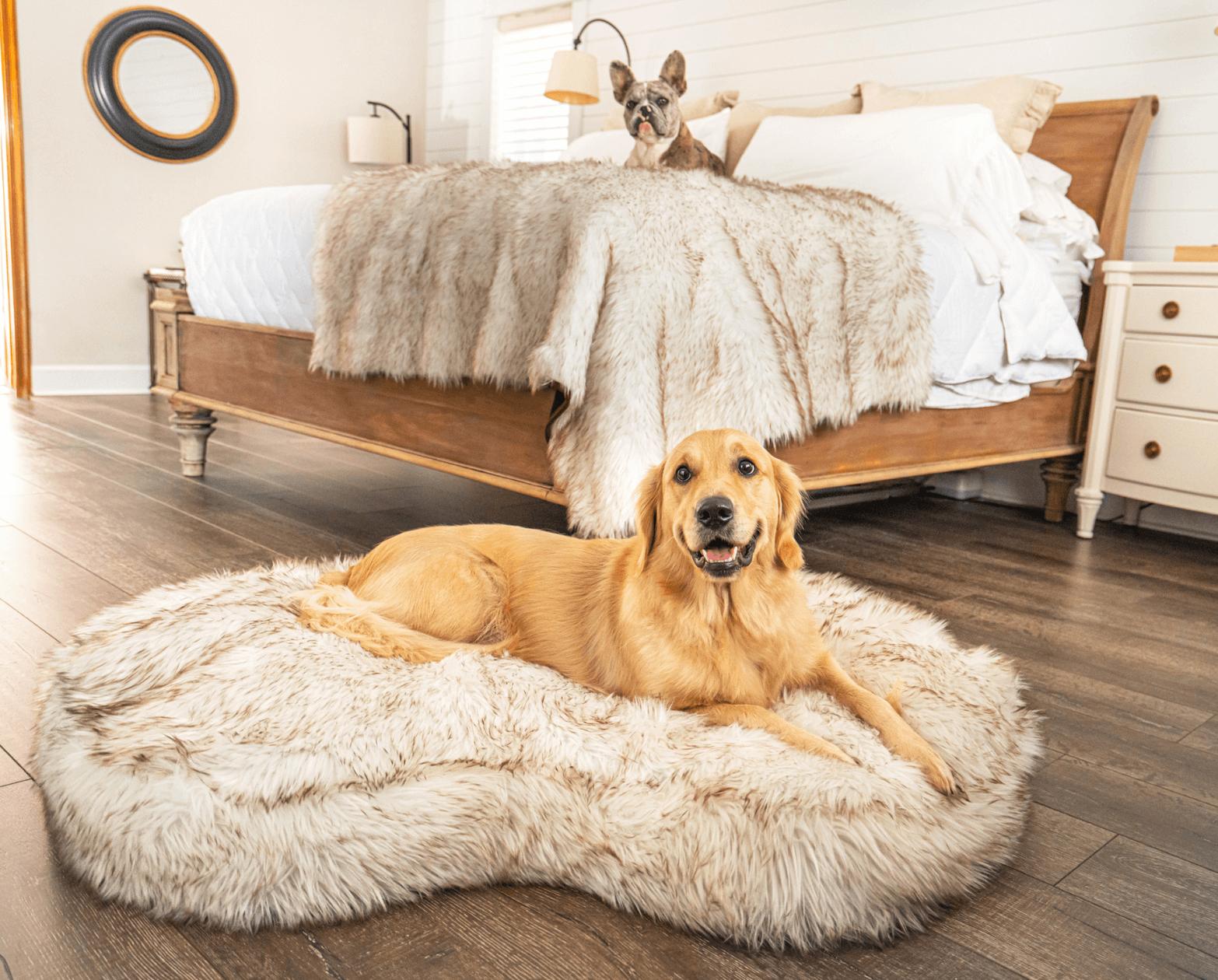 PupCloud™ Bundle – Ultra Thick Memory Foam Dog Bed Curve, White + Matching Waterproof Blanket Pet Beds, Mats & Houses Pet Designer Beds
